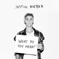 What Do You Mean? (Chorus)